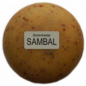 Klein kaasjes Sambal - boerenkaasje 400 gram - www.noordhollandseboerenkaas.nl
