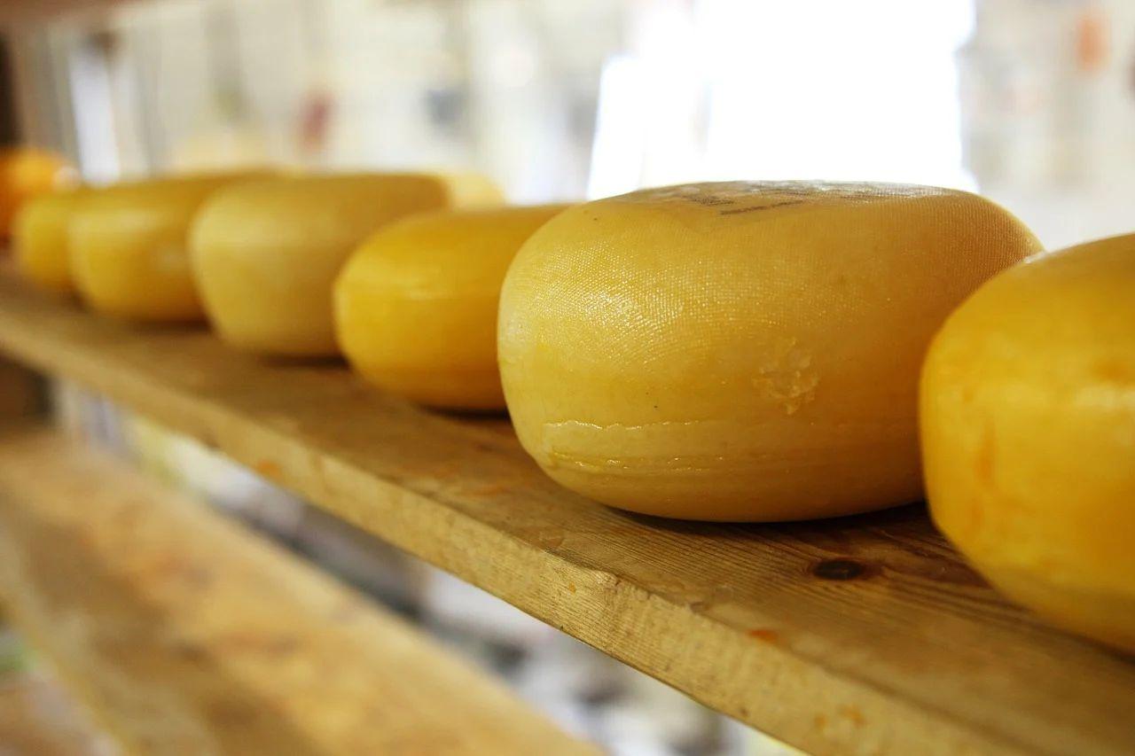 Kleine ronde kaas bewaren - Noord-Hollandse Boerenkaas - Boerenkaasje Noord-Holland 400g - Bestel je boerenkaas op www.NoordHollandseBoerenkaas.nl